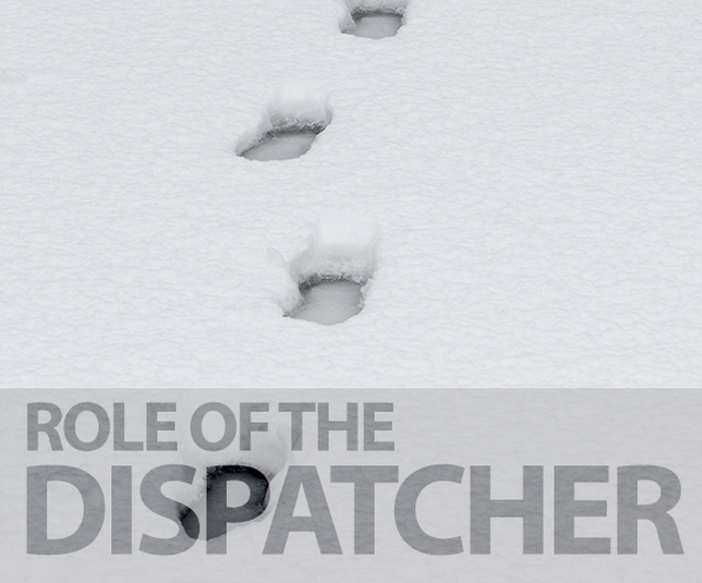 Role of a Dispatcher